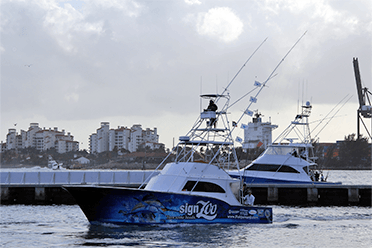 Miami deep sea fishing fishing charters fish jumanji for Deep sea fishing st augustine