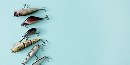 Choosing the Right Lure