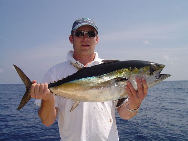 Tuna Fishing Miami